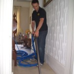 Professional Clean of a Domestic Carpet