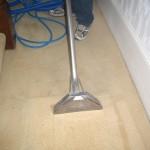 Professional Clean of a Beige Carpet
